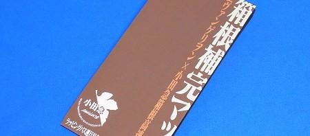 箱根補完マップ 小田急ラッピングバスバージョン、表紙が茶色になっている
